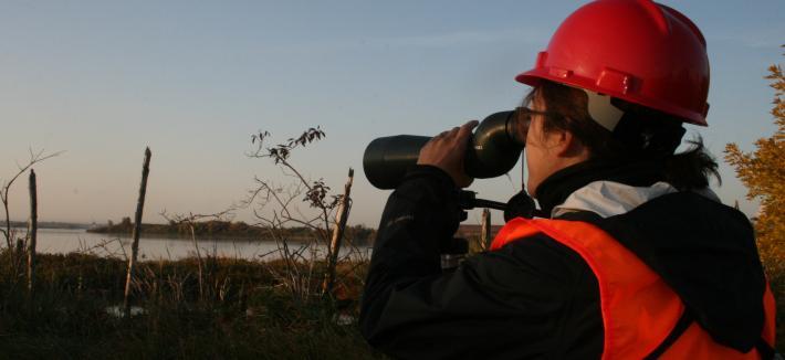 Female bird scientist at dawn looking through telescope.