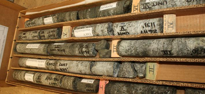 A long box with lines of mineralized rock drill core.