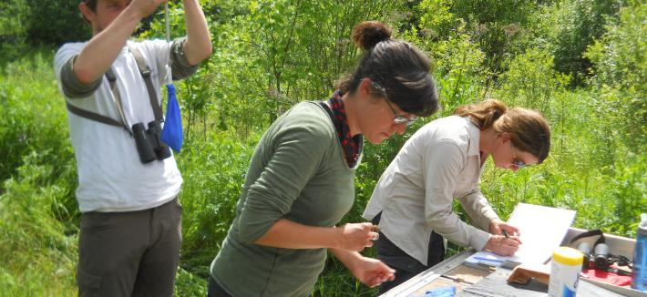 A male and two female scientists in a forested area making notations.