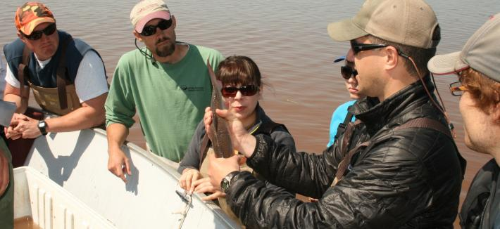 Group of researchers in waders, one holds a fish tail up.