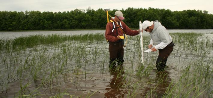 Two men in wetland with measuring tool