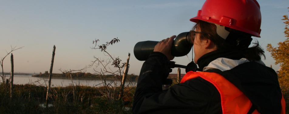 Woman outdoors peering through binoculars.