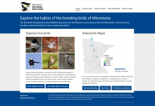 Screen shot of Minnesota Breeding Bird Atlas website