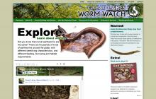 Screenshot of Great Lakes Worm Watch website