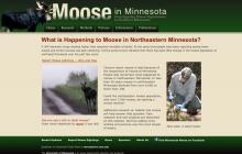 Screenshot of Moose in Minnesota website
