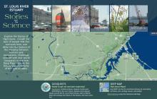 Screenshot of St Louis River Estuary: the Stories and the Science website