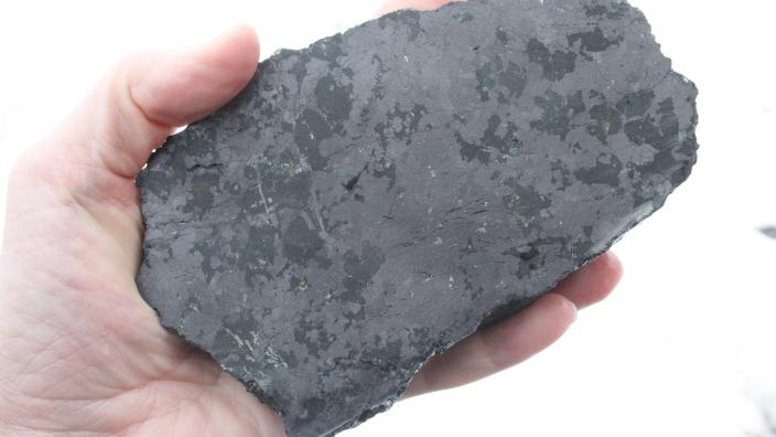 Hand holding black speckled rock