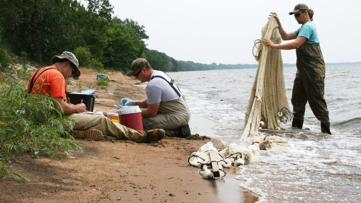Two researchers in waders sitting on a lake beach. One researcher in waders with a large net.