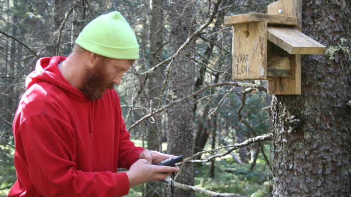 A man in red hoodie jacket and green cap works a handheld device by nest box hung on tree.