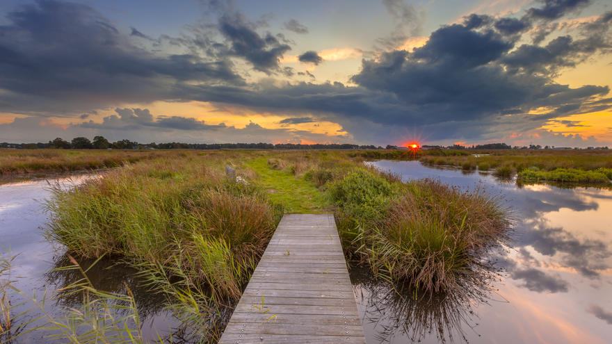 Outdoor scene of dock jutting into water with cattails and sun setting on horizon