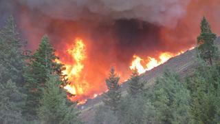 Flames burning a hillside forest