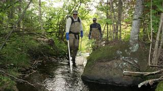 Two men in waders walk through a shallow, wooded stream with fish nets and a pole.