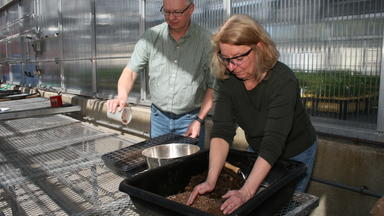 Man and woman working with brown soils at a bench in a greenhouse.