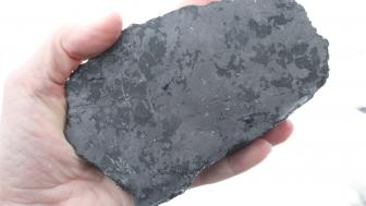 Hand holding black speckled rock