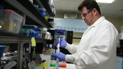 Man in white lab coat and blue gloves works at bench in laboratory
