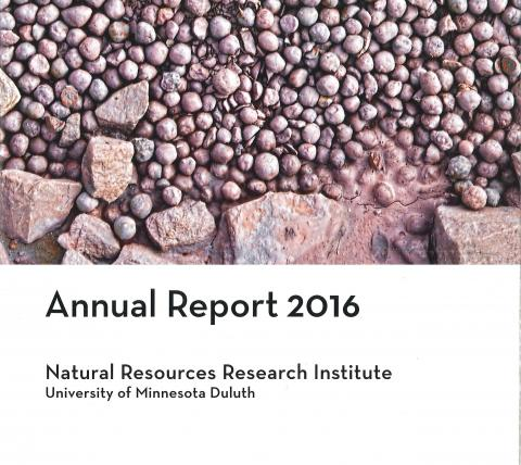 Image of annual report with taconite pellets on cover.