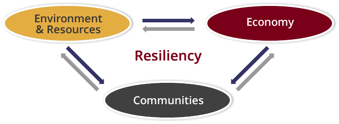 "Graphic image of three circles connected by arrows with ""resiliency"" in the center."