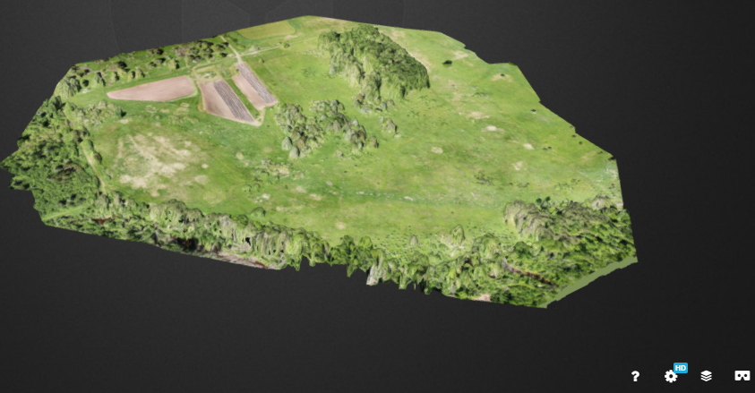 Screen grab of 3D image of woodland area